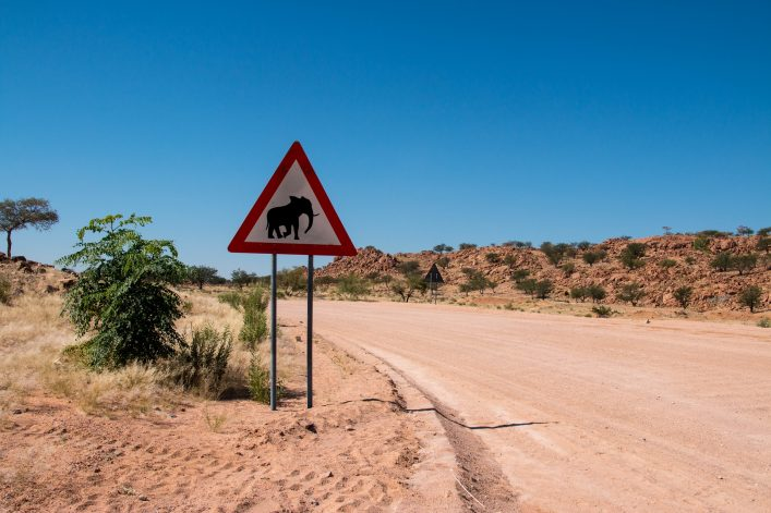 Elephant crossing, Namibia