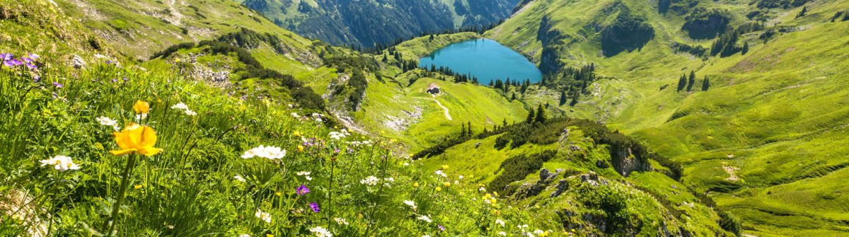 the alpine lake seealpsee near oberstdorf, bavaria, germany iStock_000043365682_Large-2