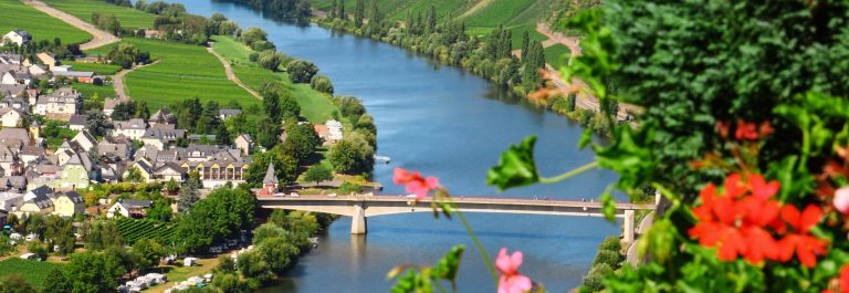 Mosel River and Valley with village in vineyard