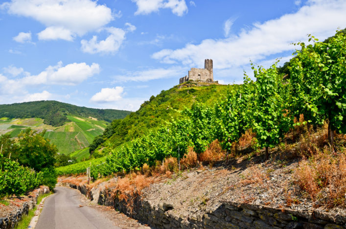 Mosel Tipps