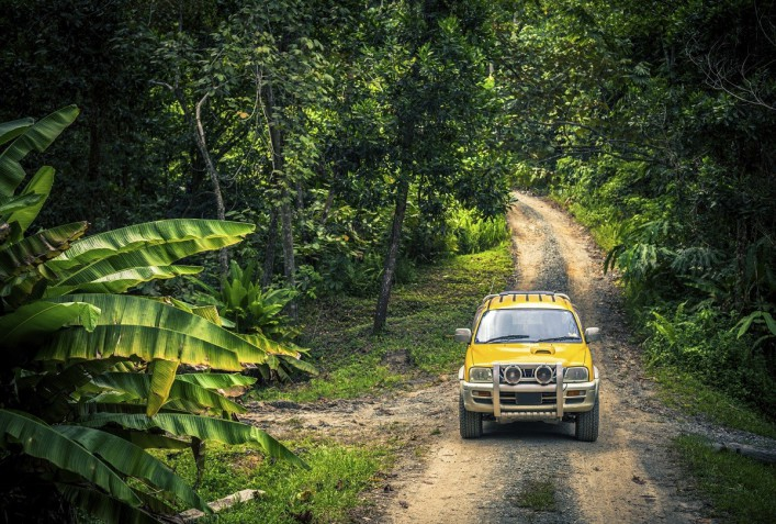 Jeep in the Forest Jungle Adventure iStock_000023745398_Large