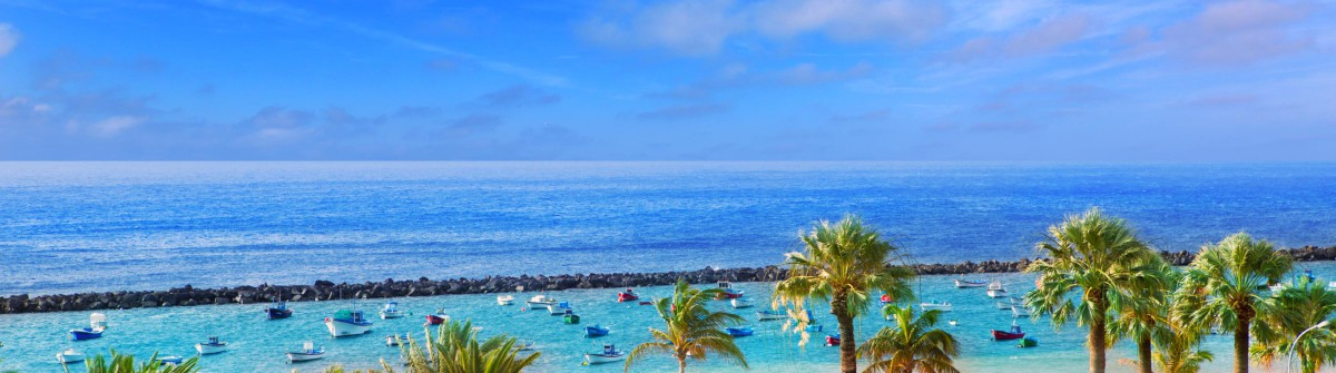 Beach-Las-Teresitas-in-Santa-cruz-de-Tenerife-north-iStock_000064791603_Large