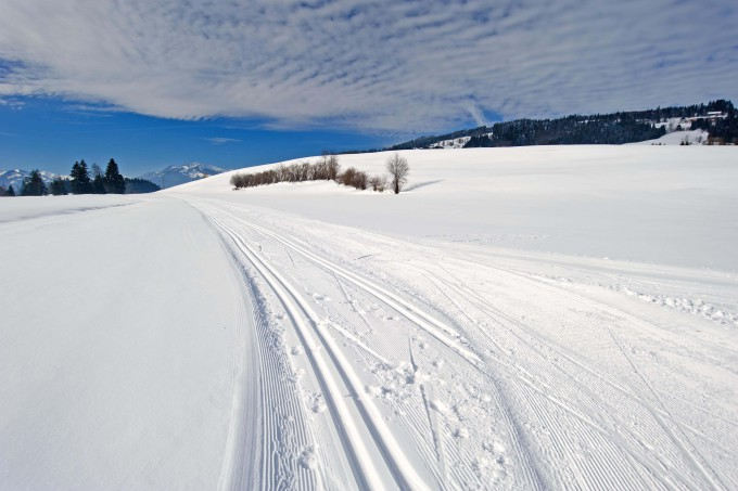 Cross-country skiing trail_shutterstock_128556152_klein