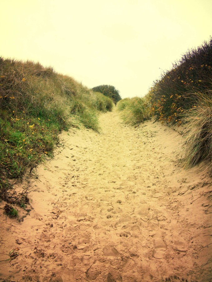 Lonely footpath through a beach dune landscape on Sylt._shutterstock_389077726_klein