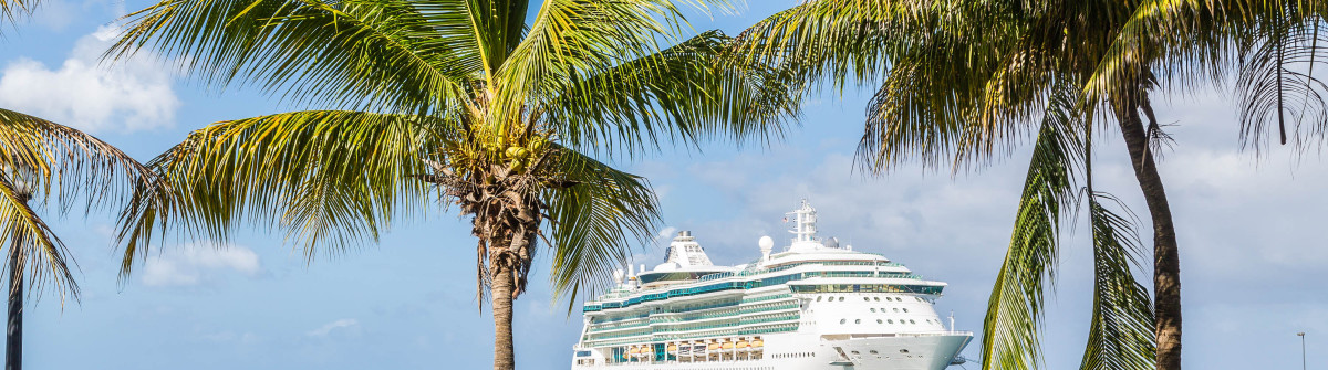 White Luxury cruise ship in blue water beyond palm trees shutterstock_216269782-2
