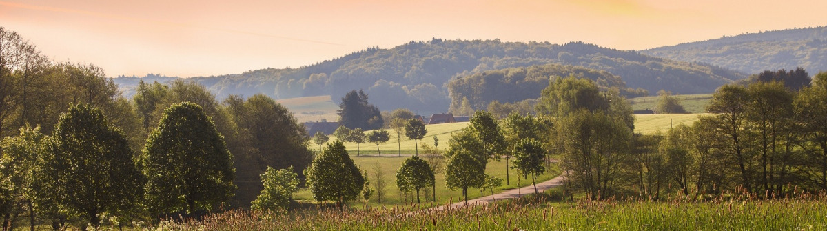 rural-saarland-landscape-in-the-morning_shutterstock_394561114