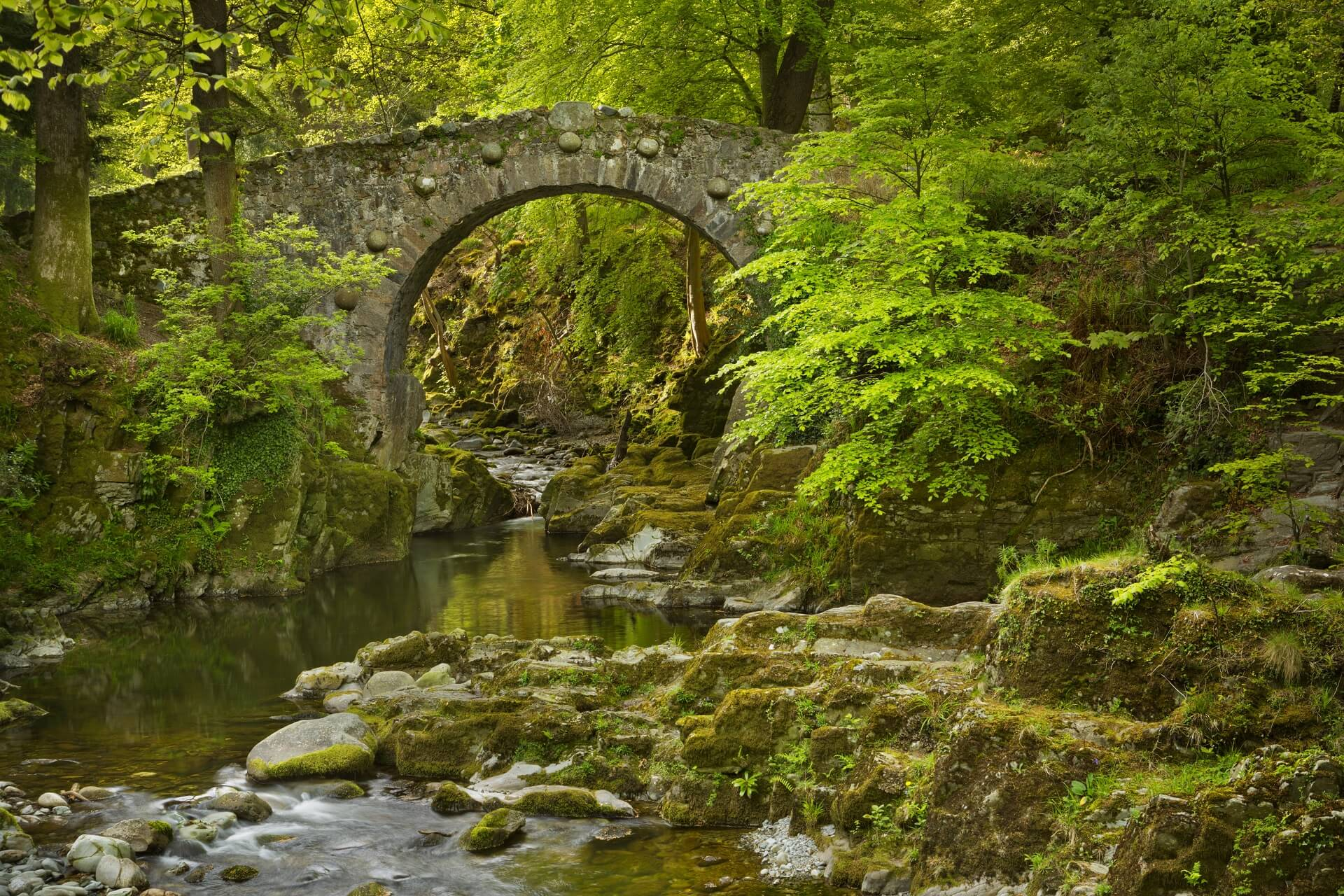 Tollymore Nationalpark - Drehort von Game of Thrones in Nordirland