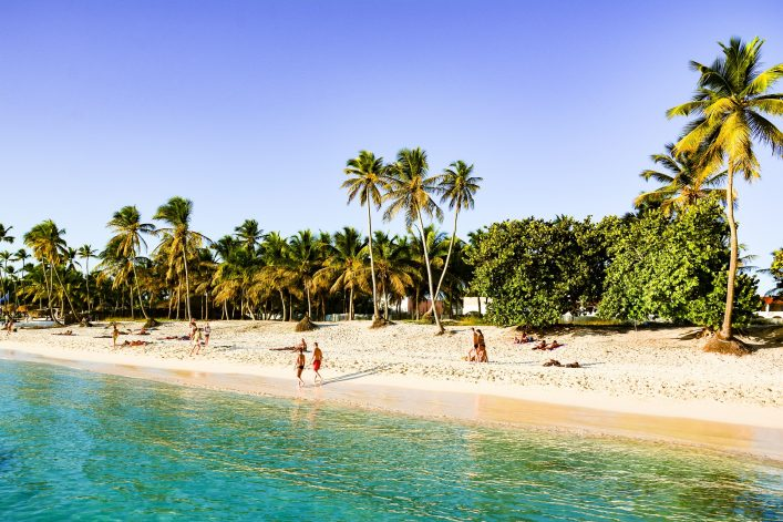 Tropical beach in caribbean sea, Saona island, Dominican Republic shutterstock_483356881