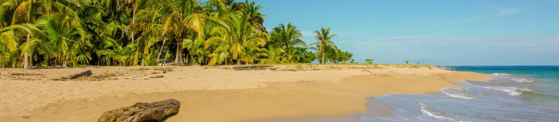 Caribbean beach close to Puerto Viejo – Costa Rica iStock_000068523807