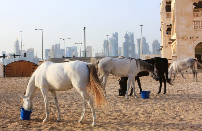 West Bay skyscrapers from the Souk Waqif stables, Doha, Qatar