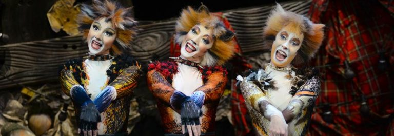 UG-TC_Cats-Musical-1
