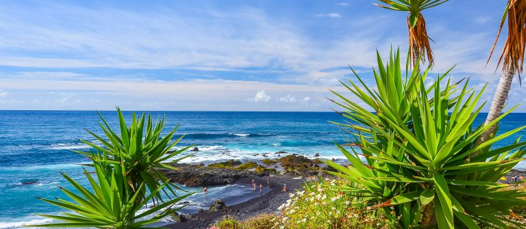 Green-tropical-plants-on-beach-in-Puerto-de-la-Cruz-Tenerife-Canary-Islands-Spain_shutterstock_241485676