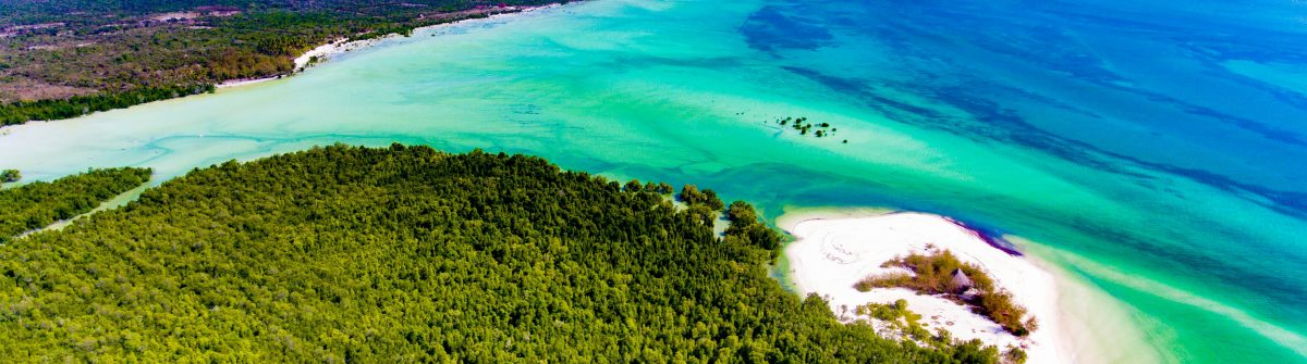 Tropical-Island-of-Zanzibar-shooting-with-the-drone.-Place-the-mangrove-forest-of-Michamvi-shutterstock_575439871