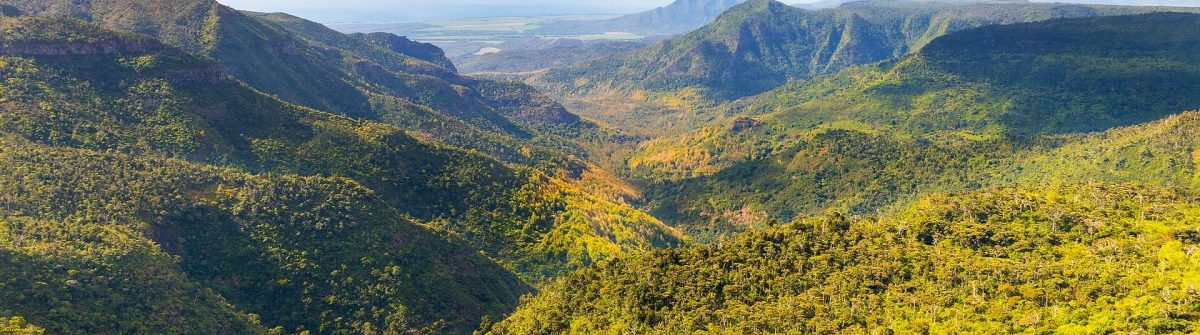 Black River Gorges Nationalpark auf Mauritius
