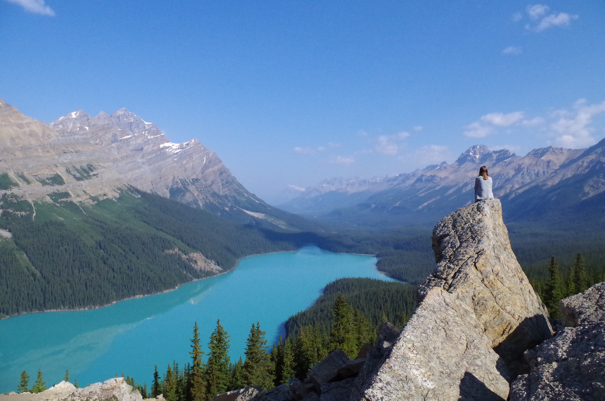 Der Peyto Lake im Banff Nationalpark